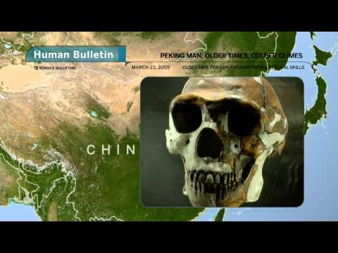 Science Bulletins: Peking Man—Older Times, Colder Climes