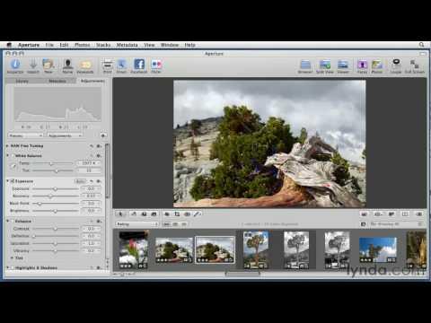 Aperture: How to correct shadow and highlight problems | lynda.com tutorial