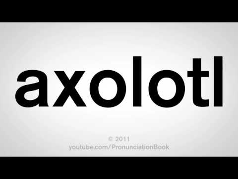How To Pronounce Axolotl
