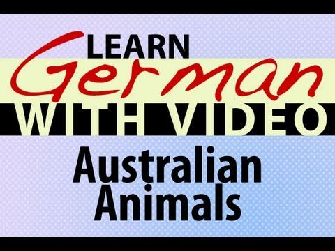Learn German with Video - Australian Animals