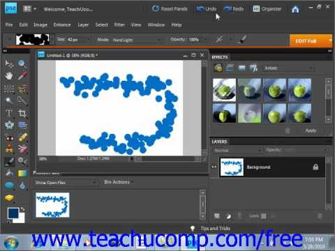 Photoshop Elements 9.0 Tutorial Setting Shape Dynamics Adobe Training Lesson 7.4
