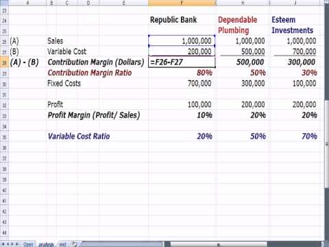 Management 25 Operating Leverage, Contribution Margin, Variable Cost Ratio