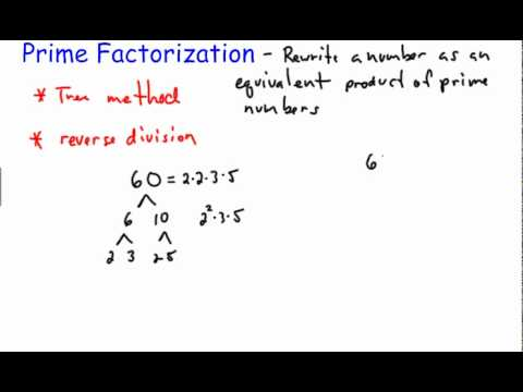Prime Factorization Basics
