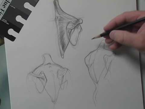 Drawing Tip Of the Week - Big Shapes