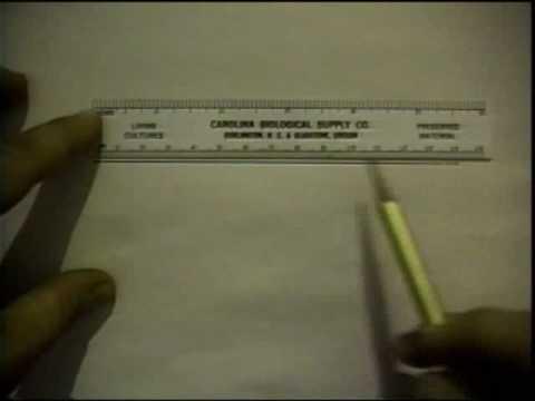 Measurement of Line Segments