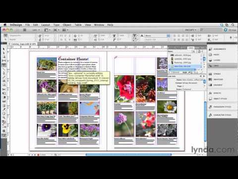 How to edit InDesign files in InCopy | lynda.com tutorial