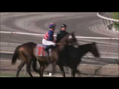 Jockeys - Fast Track Love