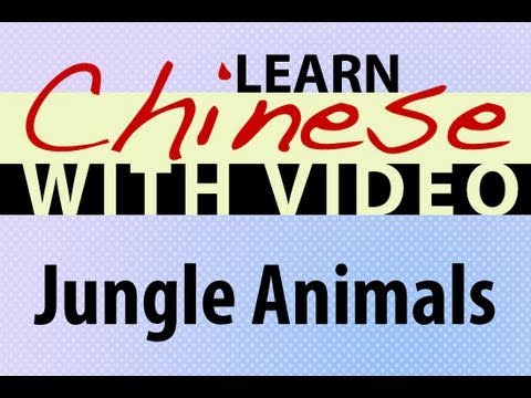 Learn Chinese with Video - Jungle Animals