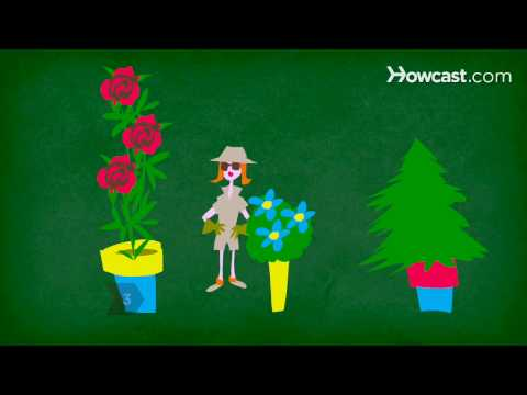 How To Garden on the Cheap