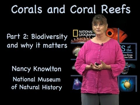 Nancy Knowlton (Smithsonian) Part 2: Biodiversity and Why It Matters