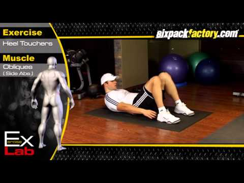 Heel Touchers : Best Oblique Exercises ( Side Abs )