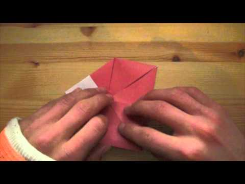 Origami Heavy Rain Bird
