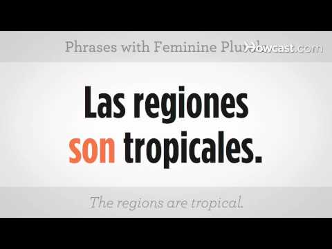 Learn Spanish / Phrases with Feminine Plurals