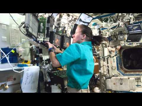 Expedition 24: Life in Space