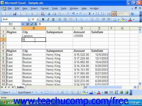 Excel 2003 Tutorial Using 'And' and 'Or' Contitions in Criteria Microsoft Training Lesson 28.2