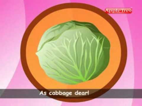 Cabbage Song
