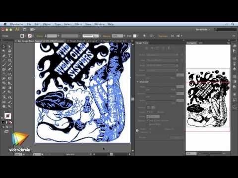 Adobe Illustrator CS6: Learn by Video Trailer