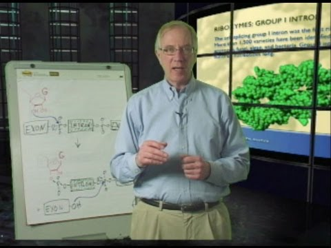 Tom Cech (CU Boulder/HHMI): Discovering Ribozymes with English Subtitles