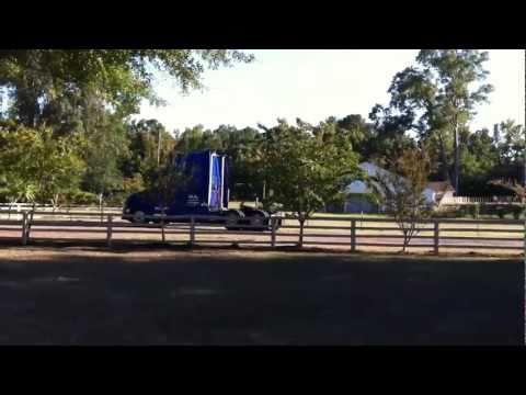 fence repair (4)