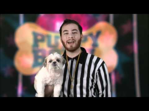 Puppy Bowl: We Love Alyssa Milano