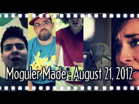 A $10 DIY Dashboard Mount Made From A Sponge, and More! : Moguler Made: August 21, 2012