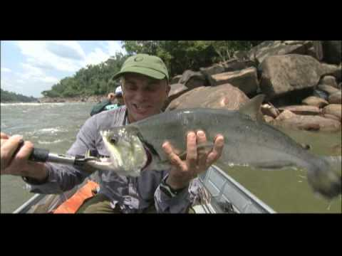 River Monsters - Killer Catfish*