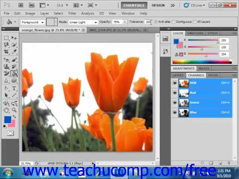 Photoshop CS5 Tutorial Using the Paint Bucket Tool Adobe Training Lesson 8.2
