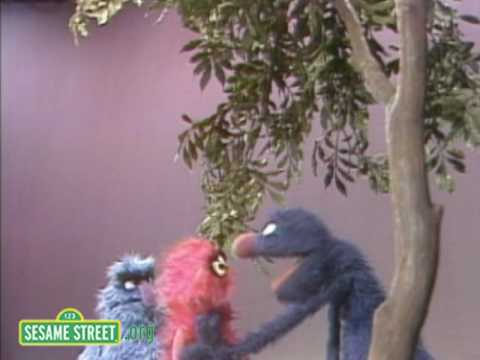 Sesame Street: Grover And Herry Explain Here & There