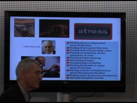 Davos 2009 - IdeasLab - Manfred F. R. Kets de Vries