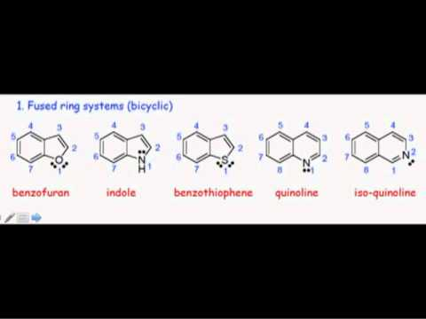A Survey of Heterocycles