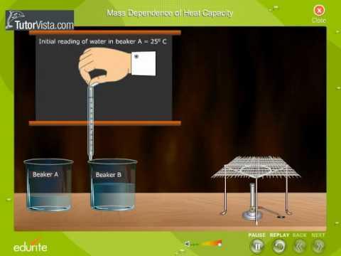 Mass Dependence Of Heat Capacity