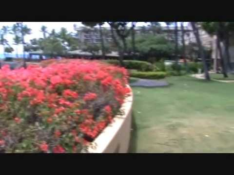 Getting married on Maui: what about the Hyatt Regency?