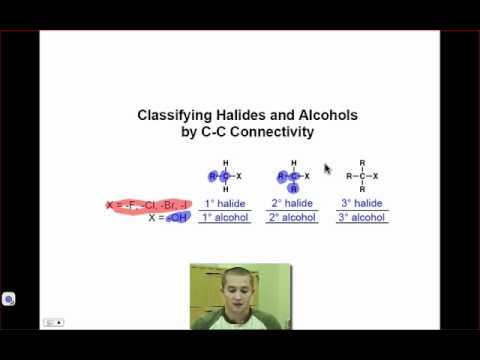 Atom Classification Lingo