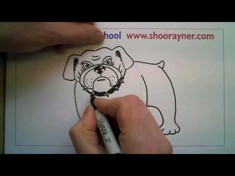 A speeded-up Drawing of a Bulldog