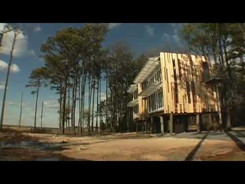 Why Design Now?: Loblolly House