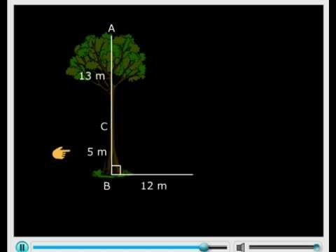 Pythagoras Theorem - Class VII Mathematics - The Triangle and its Properties Tutorials