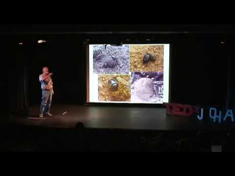 TEDxJohannesburg - Clarke Scholtz - 11/15/09