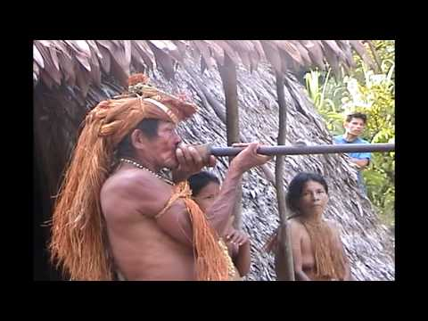 Amazon Indian sharp shooting a blowgun
