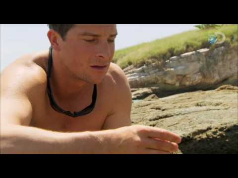 Man vs. Wild - Pacific Island - Fish Eyes Anyone?