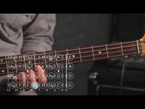 Bass Scales: How to Play the D Sharp/E Flat Minor Scale