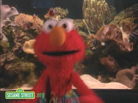 Sesame Street: Ocean Emotion