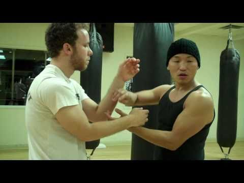 Wing Chun - Low Tan & High Fuk Switch