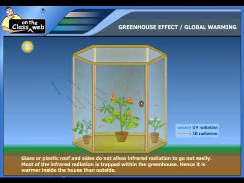 Greenhouse effect global warming.