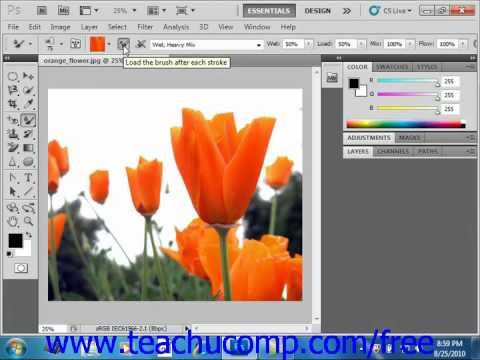 Photoshop CS5 Tutorial The Mixer Brush Adobe Training Lesson 5.11