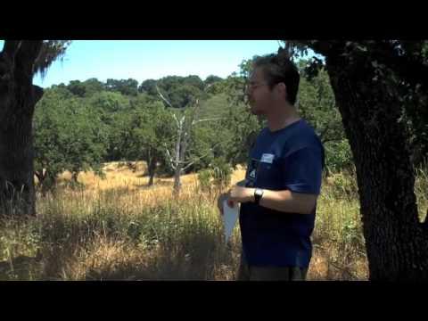 The Science Comedian at Jasper Ridge
