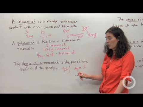 Algebra - Polynomial Vocabulary