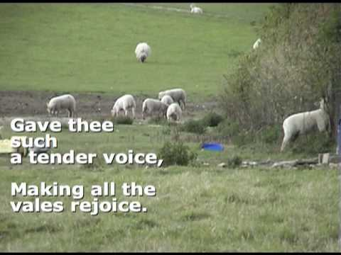 William Blake poem 'The Lamb' English Language Poetry