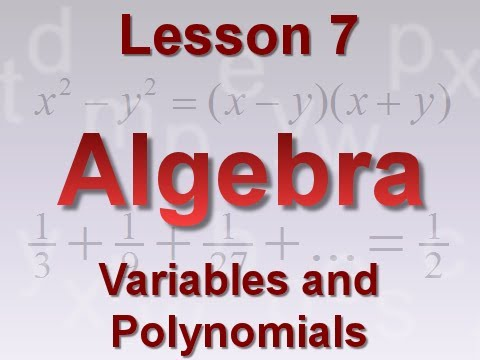 Algebra Lesson 7: Variables and Polynomials