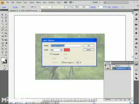 Illustrator CS4 Intro 47: Using Template Layers