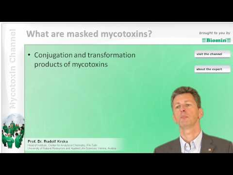 What are masked mycotoxins?